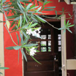 an open door leading into the creche (orphanage)