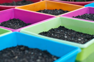 colorful pots with soil in them